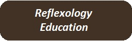 Reflexology Education of Manual Academy
